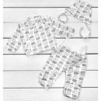 Теплый комплект одежды Серые Котики для новорожденных в роддом